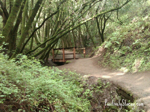 Hike Bridge