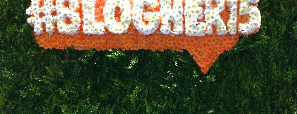 It's a Wrap – #BlogHer15: Experts Among Us
