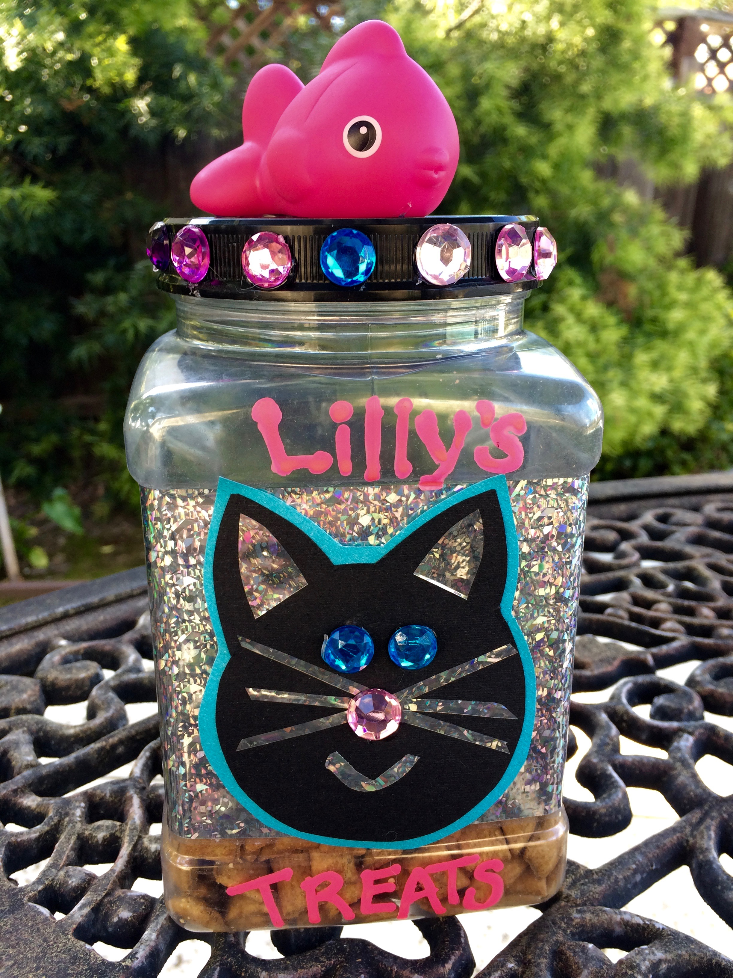 DYI Cat Treat Jar