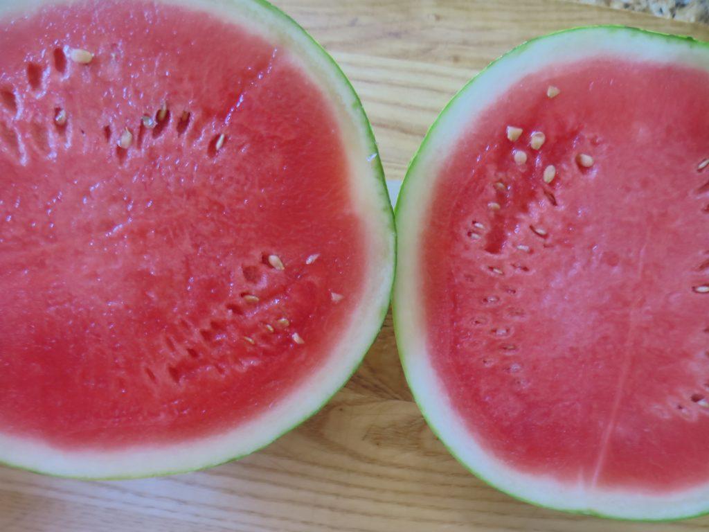 Sliced Watermelon Jello Shots