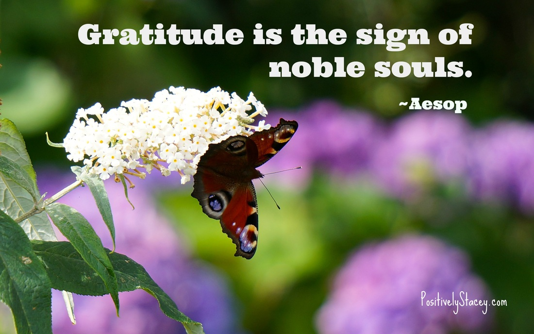 Gratitude - Feeling Thankful
