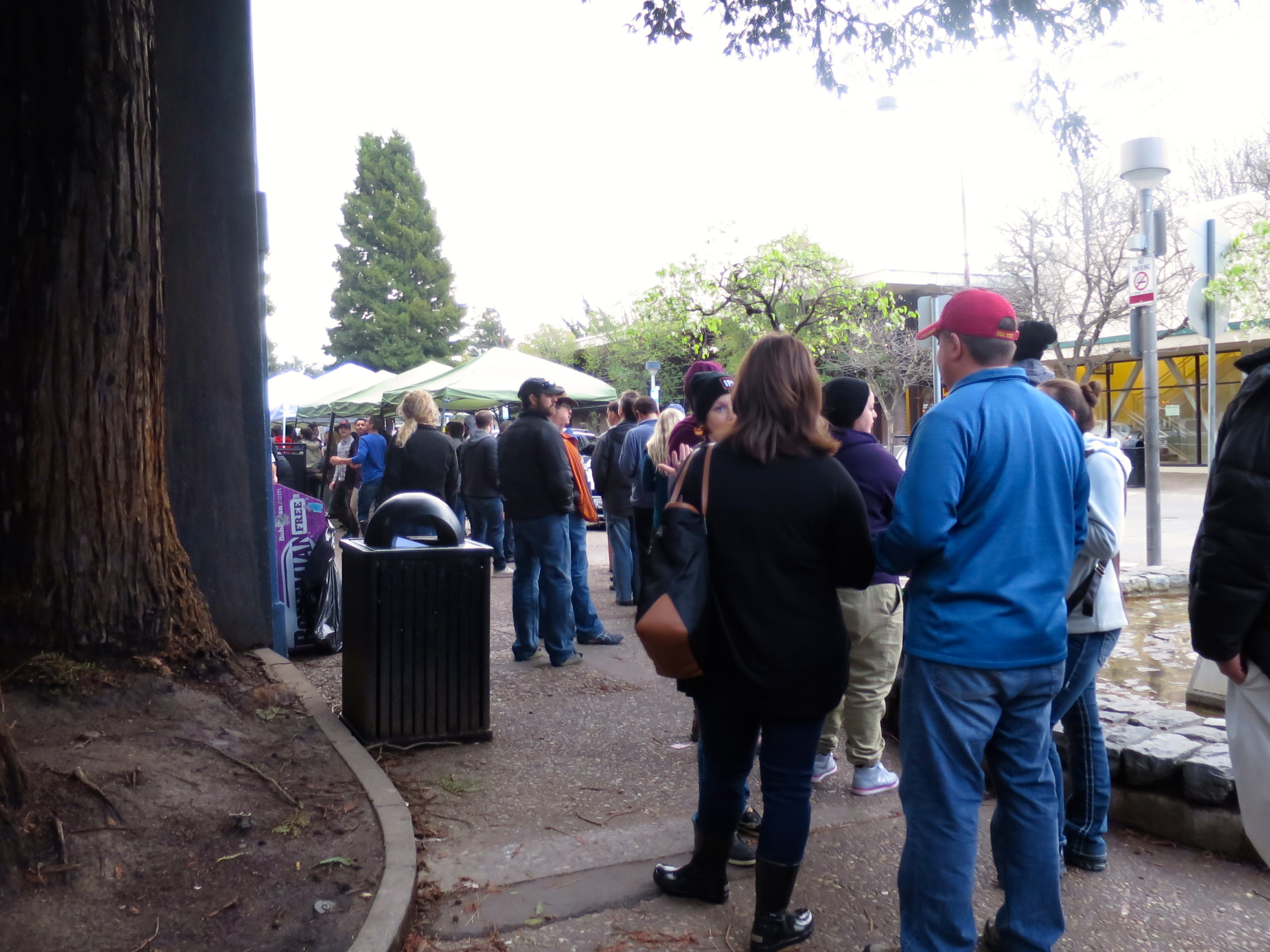 Very long lines for Pliny the Younger!