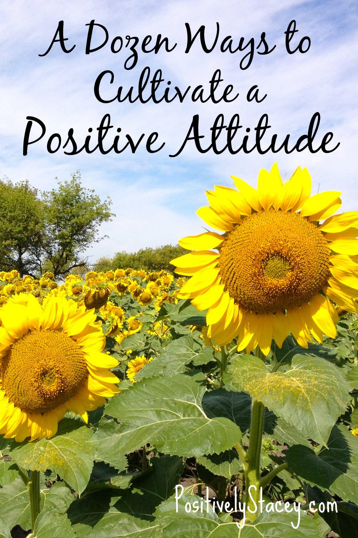 A Dozen Ways to Cultivate a Positive Attitude