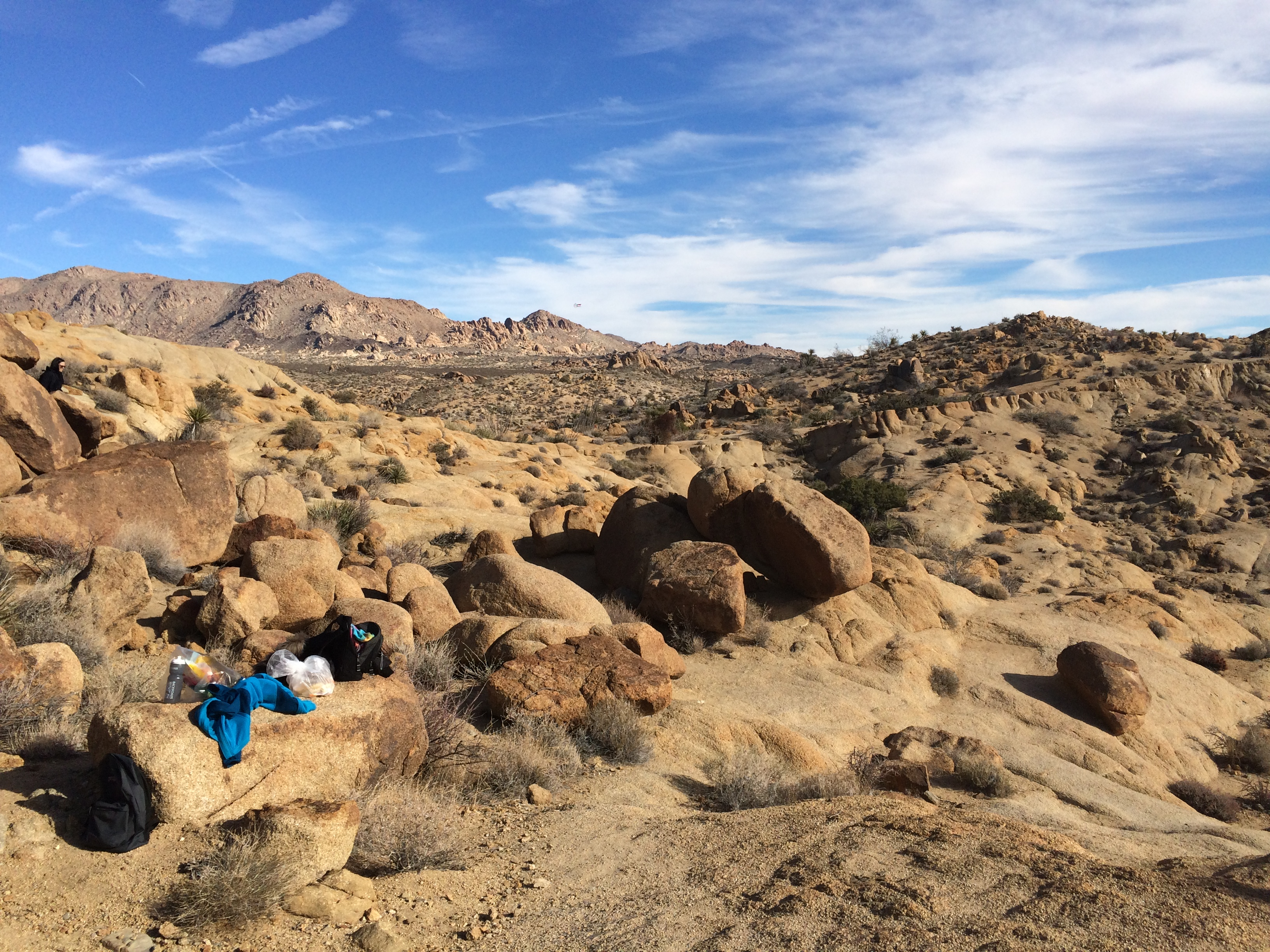 Joshua Tree National Park Picnic