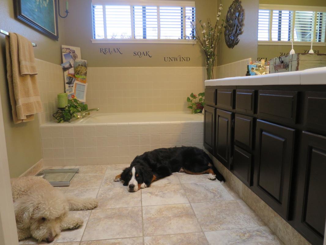 Bathroom Renovations On Any Budget