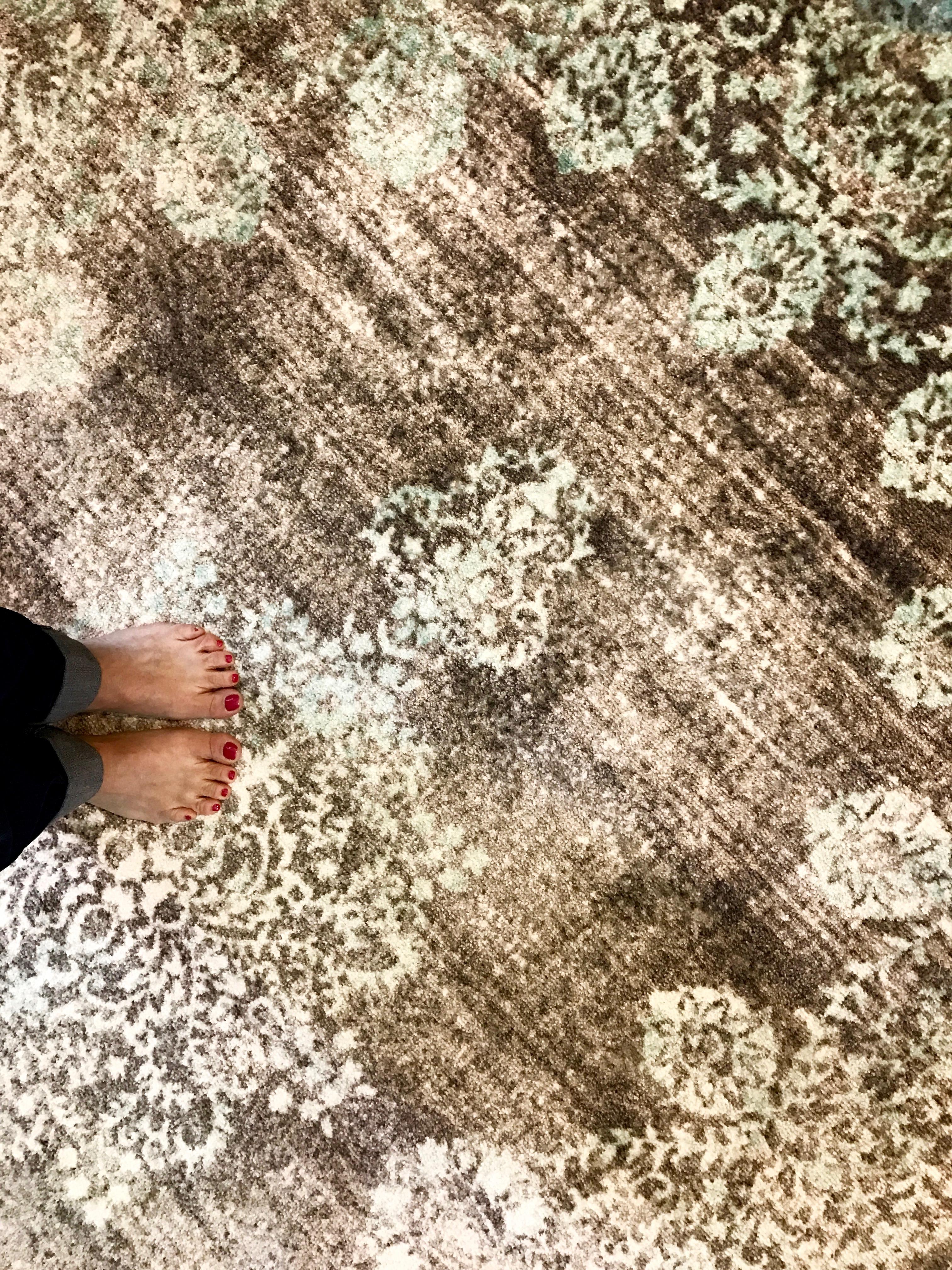 ORC - Wayfair Carpet