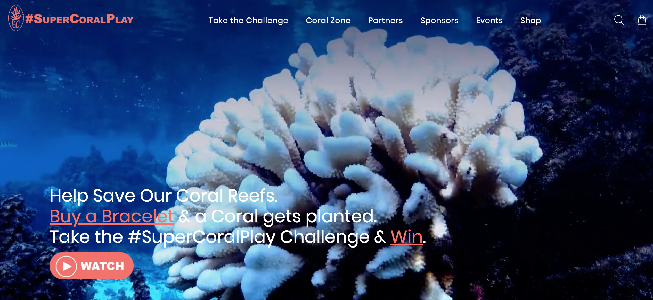 Helping the Health of Our Oceans #SuperCoralPlay