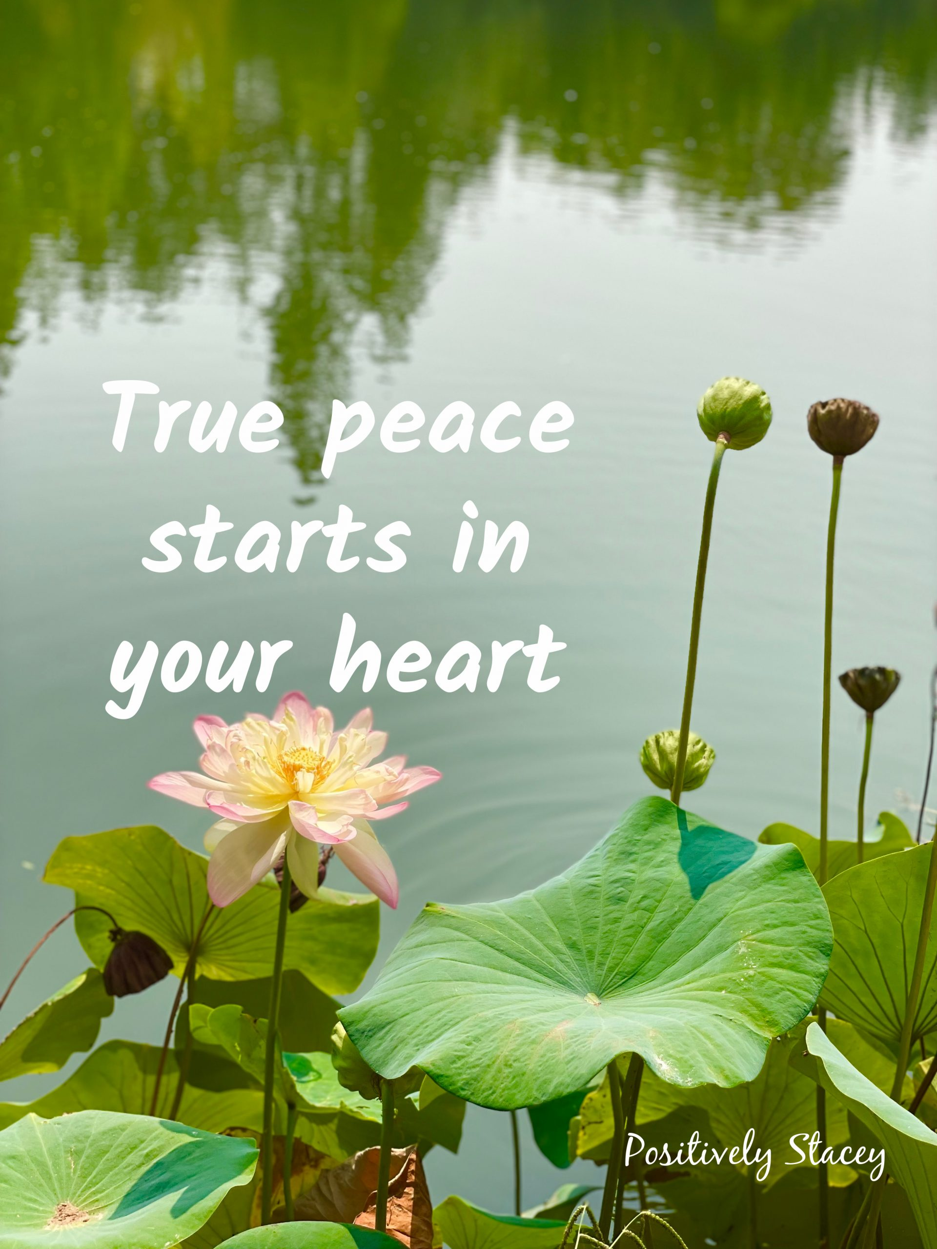 Finding Peace in Your Heart